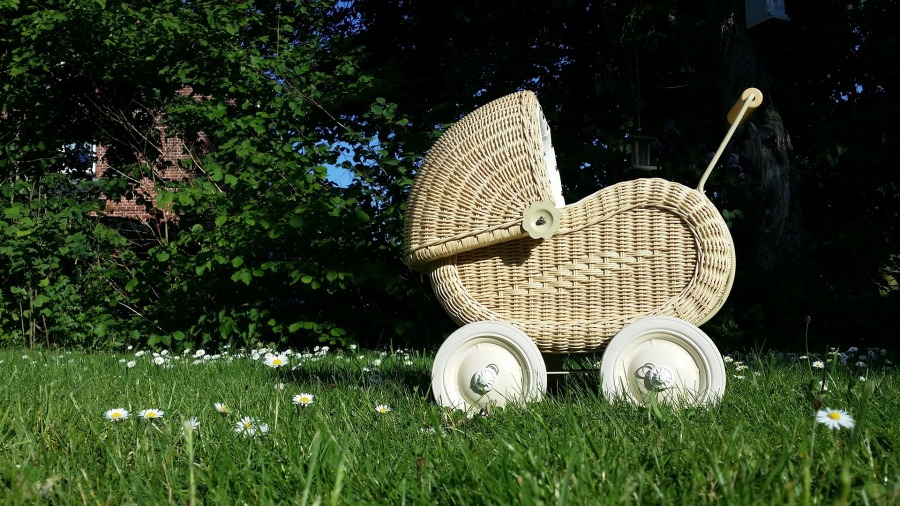 baby-carriage-798775_1920