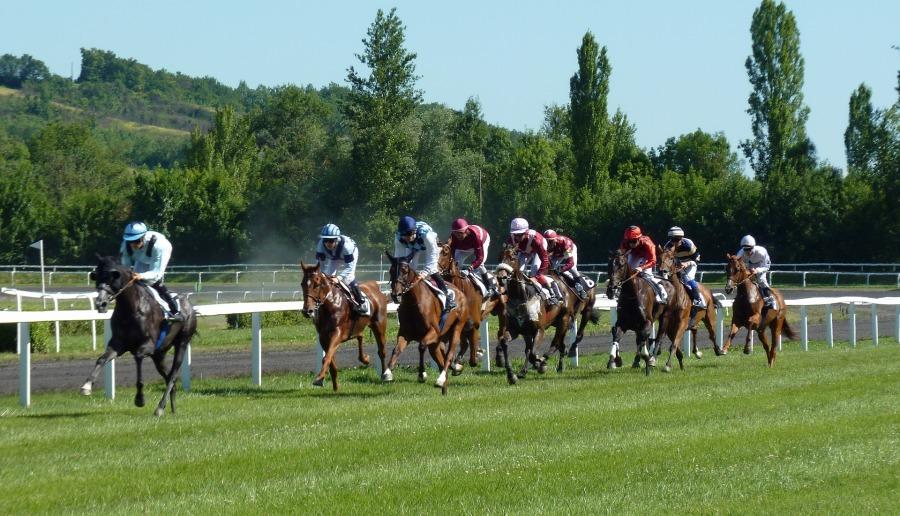 horse-race-1665688_1920
